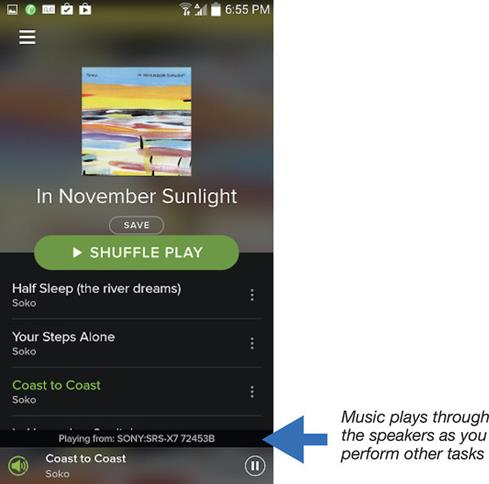 Screen shot of music playback on Spotify
