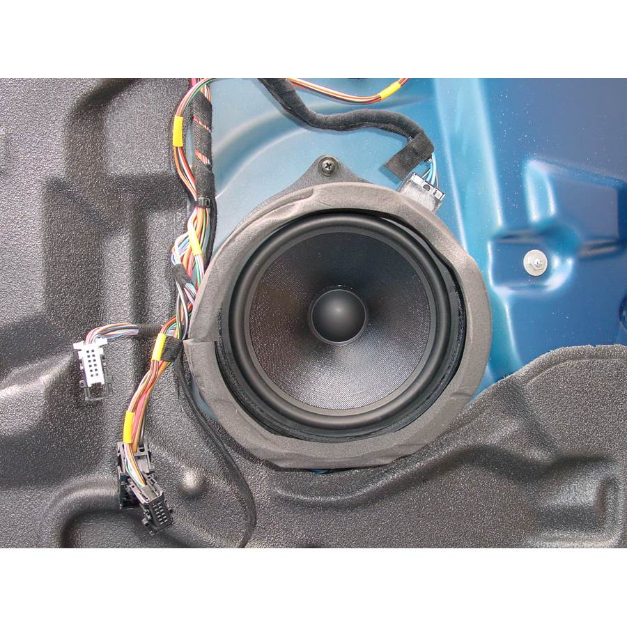 2005 BMW X5 Front door woofer