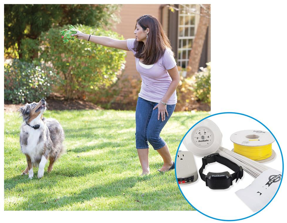 Woman playing with her dog in the yard while the dog wears a Yard Max collar.