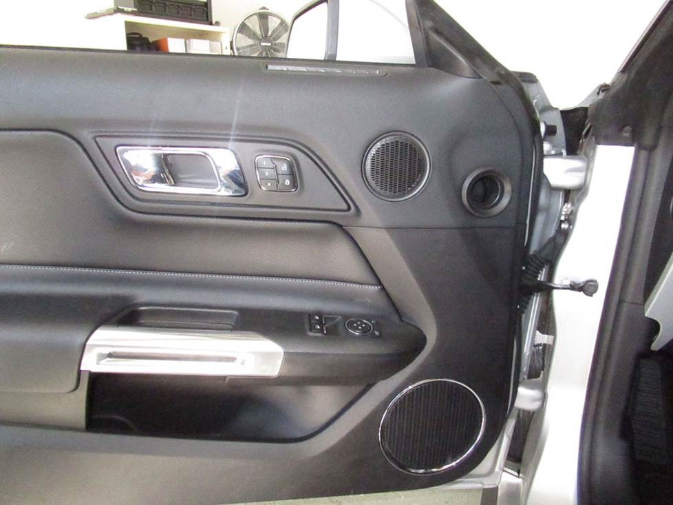 ford mustang door midrange and woofer