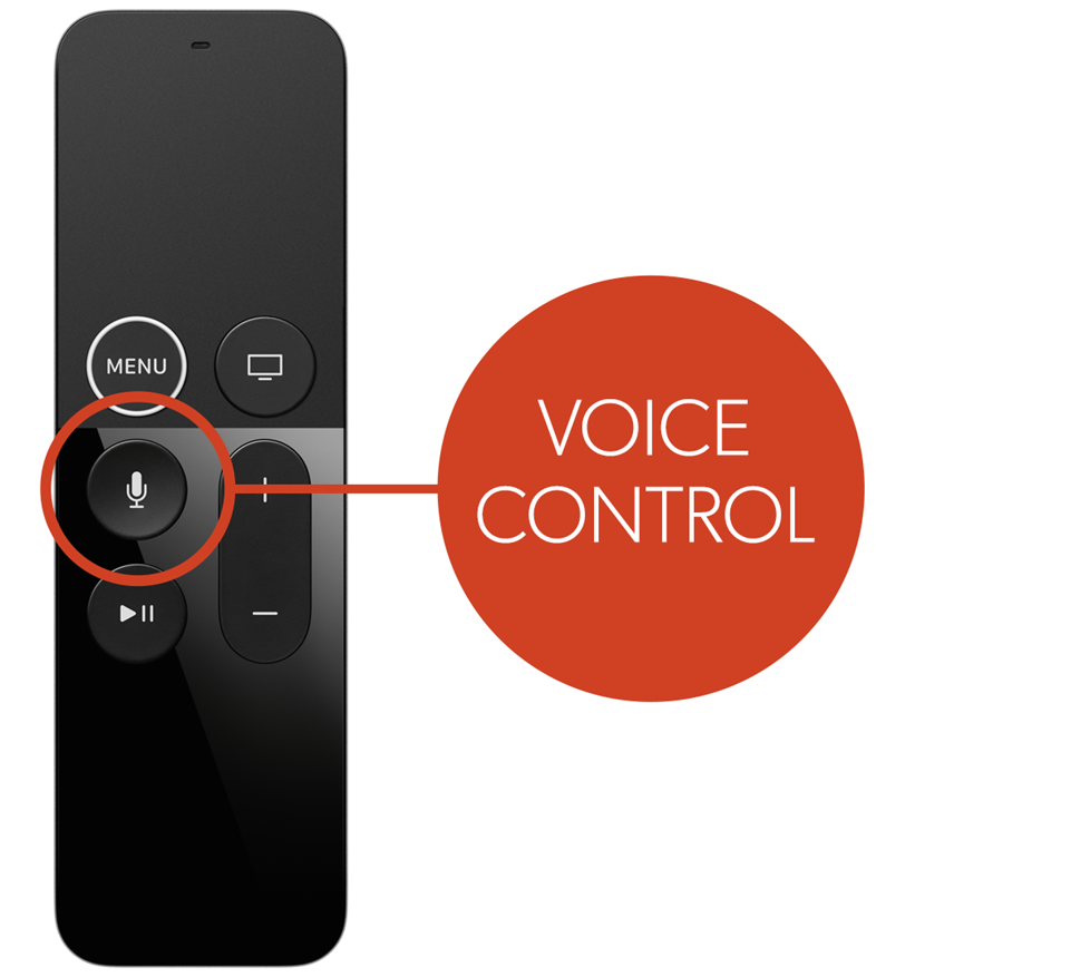voice control button on remote