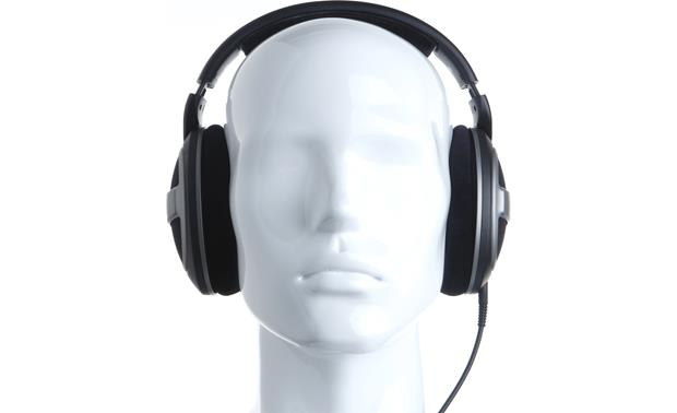 Sennheiser HD 559 Mannequin shown for fit and scale